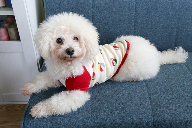 ドッグ(犬用)Tシャツの作り方~3. 縫製/オーダーメイド型紙